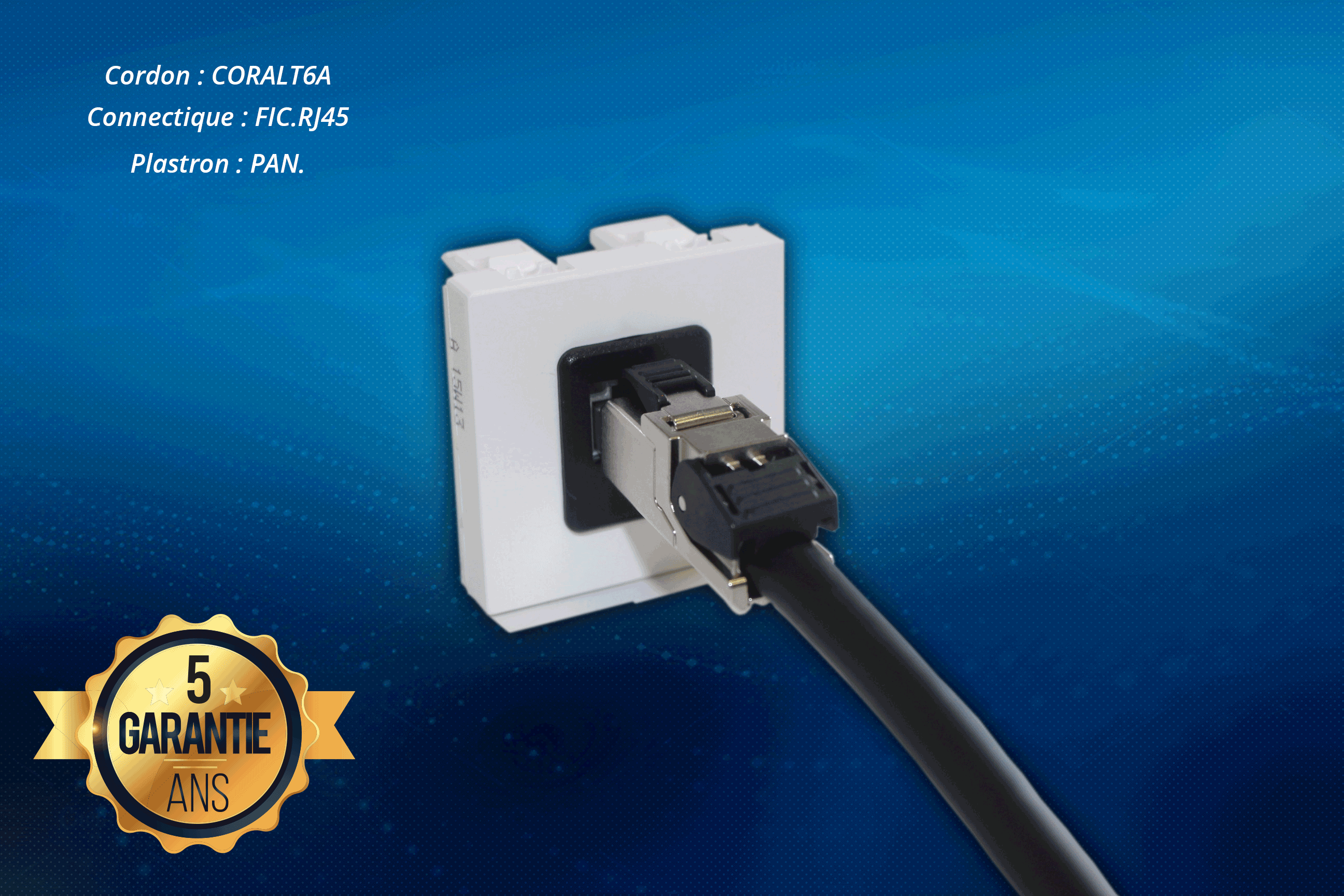 La chaîne de liaison gamme HDMI 2.0 & DisplayPort 4K